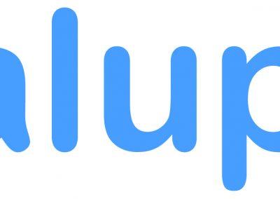 Logo Valuplex